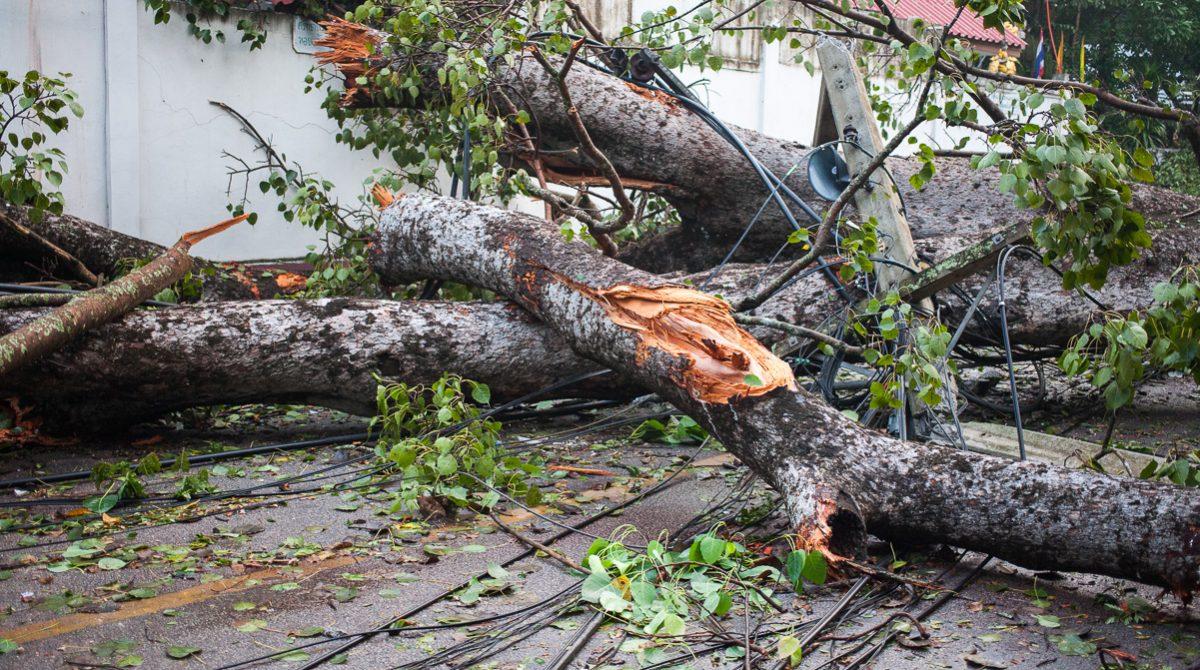 Hjälp finns i händelse av katastrof