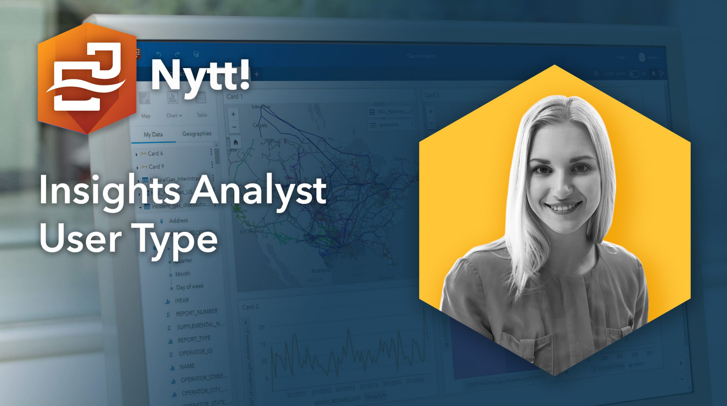 Insights Analyst User Type