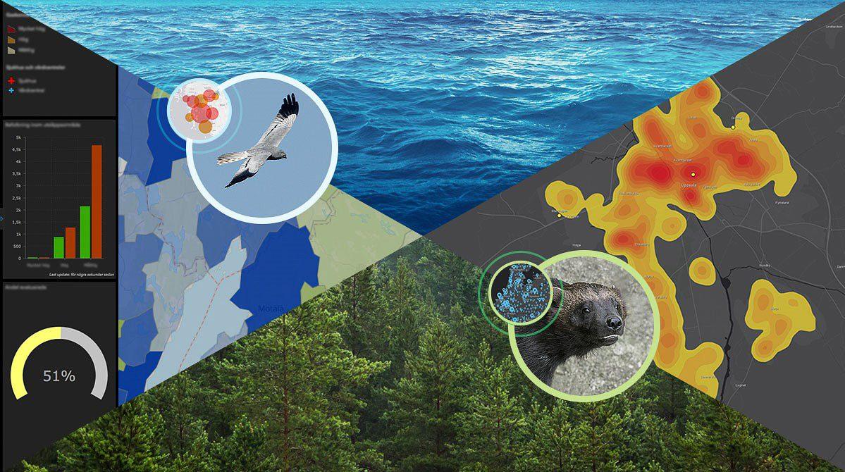 Kunskap bästa sättet att skydda biologisk mångfald