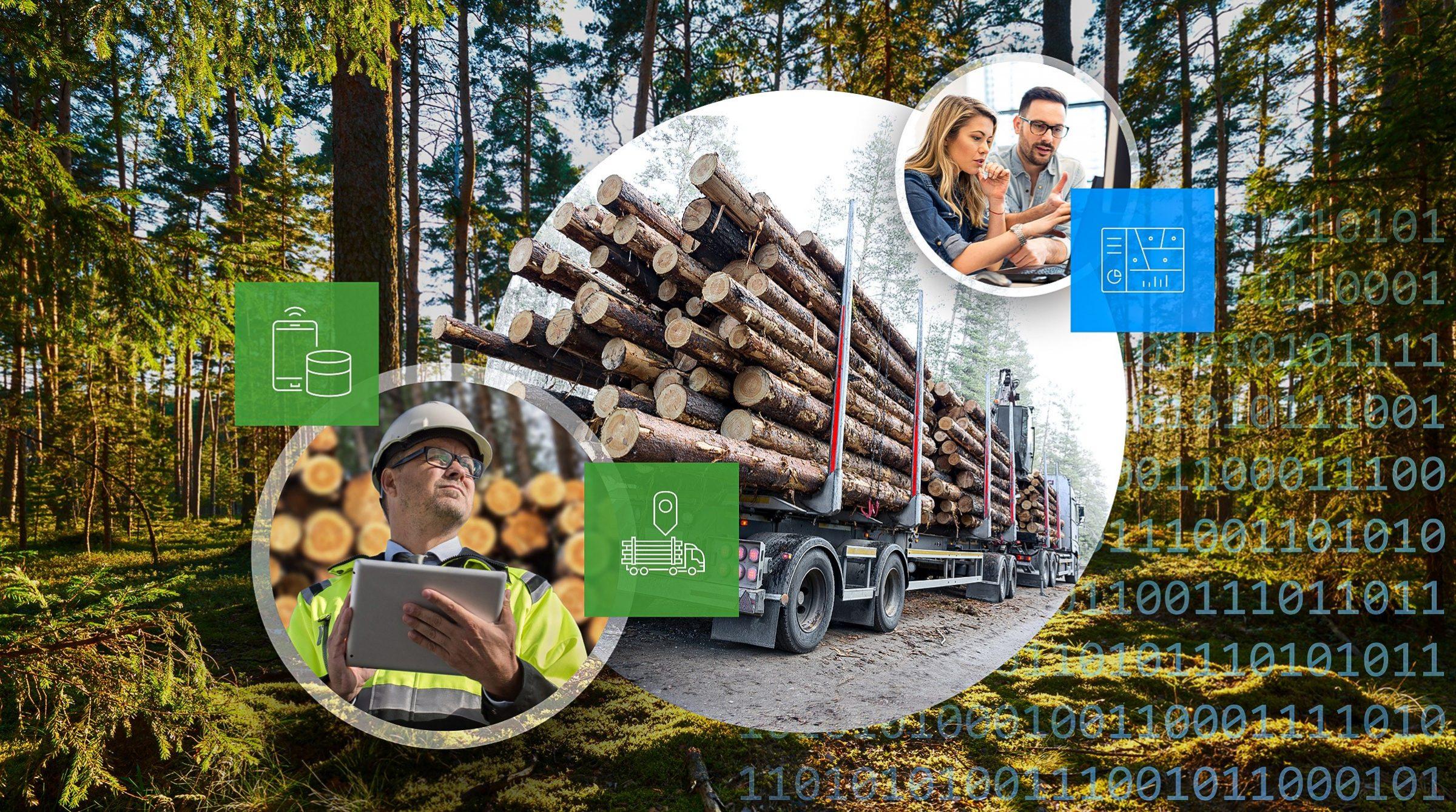 Digitalisering inom skogsnäringen