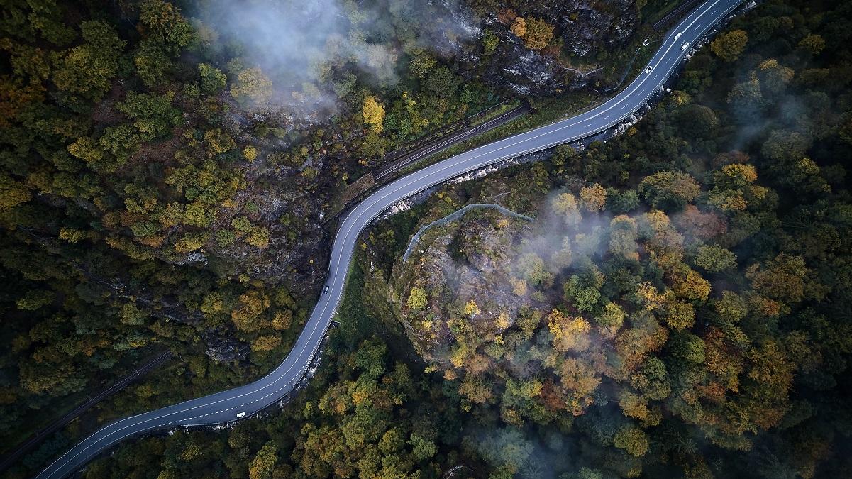 gata ovanifrån genom en dimmig skog på hösten